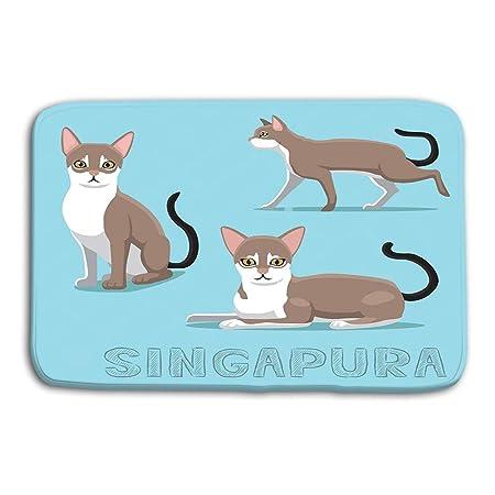 vbndgfhjd Doormat Indoor Outdoor Cat Singapura Cartoon Vector ...