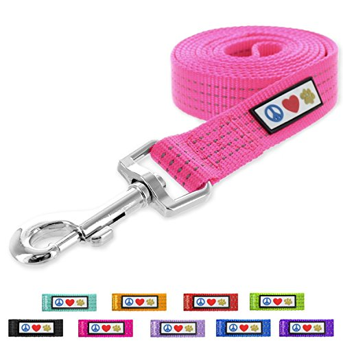 Pawtitas Reflective Leash Puppy Leash Reflective Dog Leash Reflective Dog Training Leash 4 ft Dog Leash Extra Small Dog Leash/Small Dog Leash Pink Dog Leash