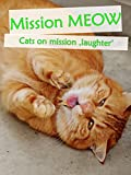 Clip: Mission Meow - Cats on mission laughter