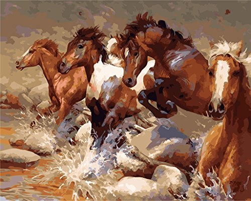 Wooden Framed Paint by Number or Not Diy Oil Painting by Numbers - Three Horse 1620 inches - PBN Kit for Adults Beginner Girls Kids Picture Decor Decorations ()