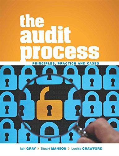 BEST The Audit Process WORD