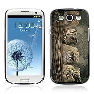 CASETOPIA / Owl's & Cat / Samsung Galaxy S3 I9300 / Prima Delgada SLIM Casa Carcasa Funda Case Bandera Cover Armor Shell PC / Aliminium