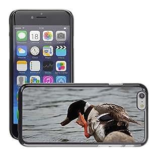 "GoGoMobile Slim Protector Hard Shell Cover Case // M00124525 Duck Mallard Waterfowl Scratch Bird // Apple iPhone 6 4.7"""