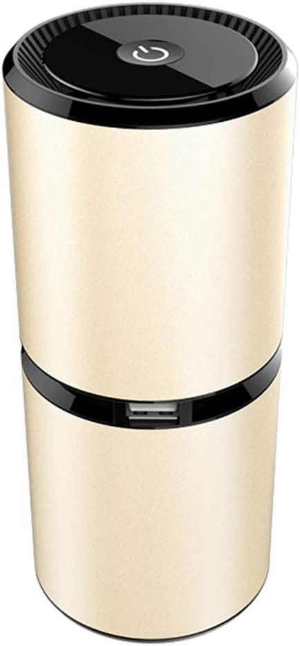 ALXDR Purificador De Aire para Auto Puertos USB Dobles, 8 Millones De Ambientadores Aniónicos, Ioniza Y Purifica Silenciosamente El Aire para Reducir El Olor Y Las ...