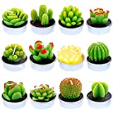 Glarks 12Pcs Unique Designs Cactus Tealight Candles Set, Handmade Delicate Succulent Cactus Artificial Succulents Tealight Candles Perfect for Birthday Party Valentine's Day Wedding Spa Home Decor