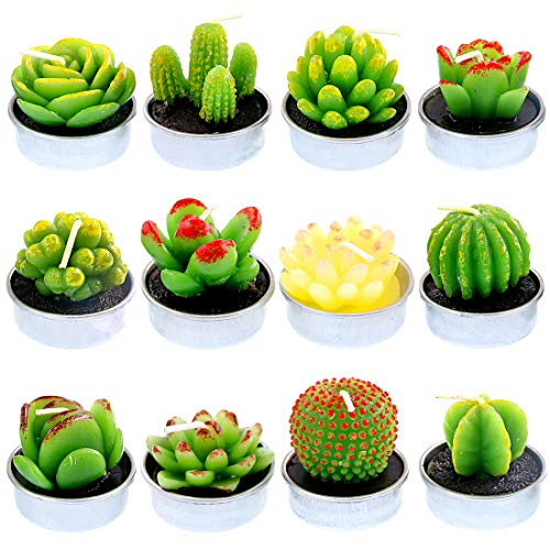 Glarks 12Pcs Unique Designs Cactus Tealight Candles Set, Handmade Delicate Succulent Cactus Artificial Succulents Tealight Candles Perfect for Birthday Party Valentine's Day Wedding Spa Home Decor ()