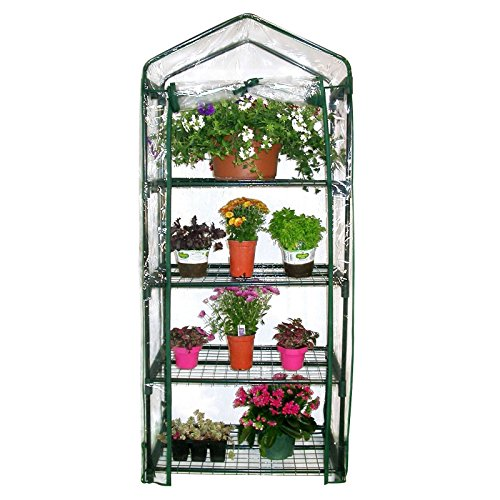 Homewell 4 Tier Mini Greenhouse 27
