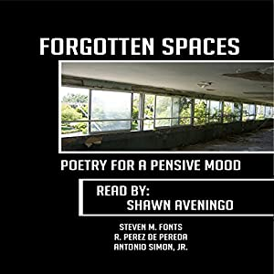 Forgotten Spaces: Poetry for a Pensive Mood Audiobook