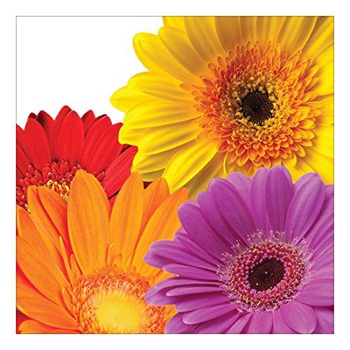 Creative Converting 652205 16 Count Paper Beverage Napkins, Flower Fantasy