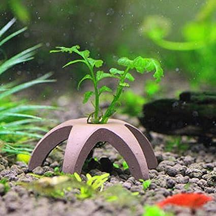 Acuario Decoración Mini Redware Camarón cámara vivienda para los camarones peces pequeños