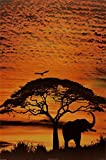 African Skies Poster 24 x 36in