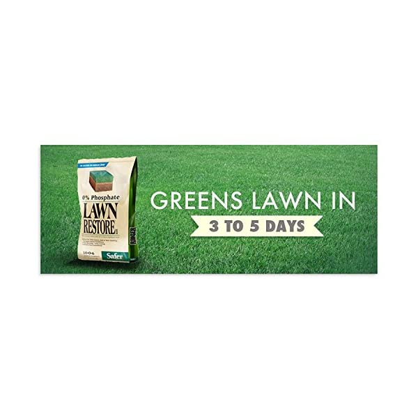 Safer-Brand-Ringer-Lawn-Restore-2-Pack