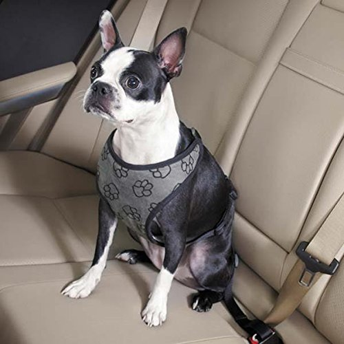 Guardian Gear Paw Print Car Pet Harness, X-Large, Charcoal