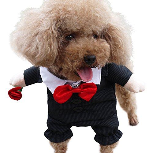 NACOCO Gents Costume Formal Dress Clothes with Bow Tie Halloween Gentleman Costumes for Dog & Cat - Dresses Formal Dog