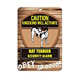 Knocking will activate RAT TERRIER DOG Metal Sign - 8 In x 12 In