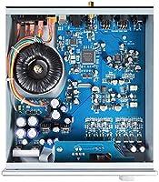 Amazon com: Yulong DA10 DAC AK4497 PLL XMOS XU208 DSD512 PCM768KHz