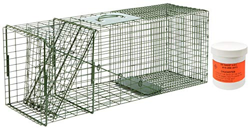 Standard Trap Door - Duke #3 Model 1110 Standard Single Door Cage Trap with On Target A.D.C. Chuckster 6oz Bait Included