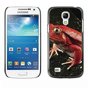 "Print Motif Coque de protection Case Cover // M00314985 Campo de trigo de trigo campo de los // Apple iPhone 6 6S 6G 4.7"""