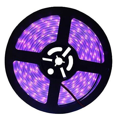 Review CREATESTAR LED UV Black