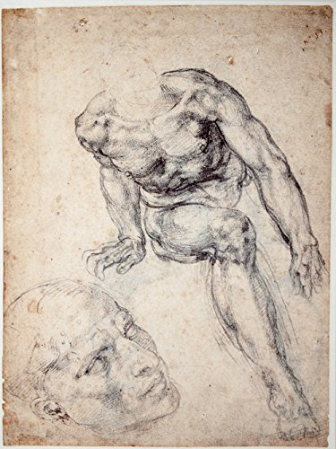 Michelangelo - Study of a male Nude separate Study of his Head - Large - Semi Gloss Print