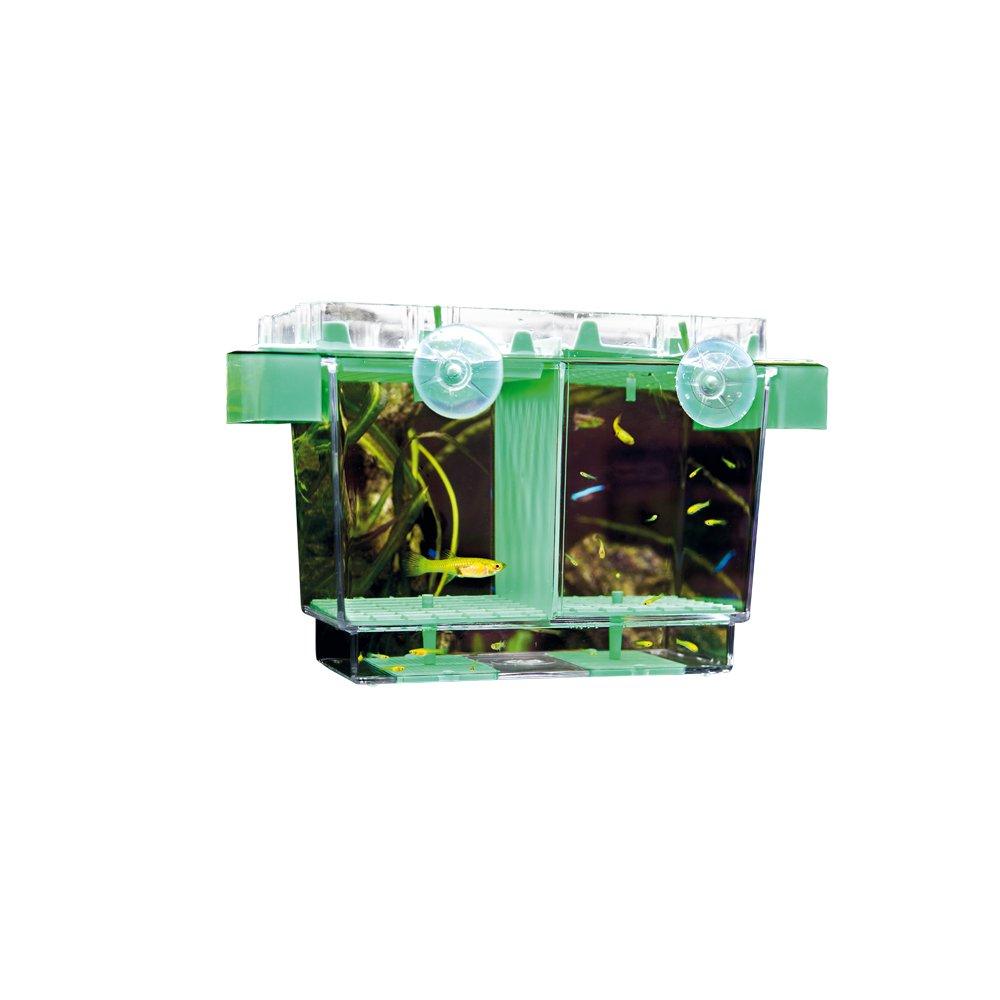 Hobby 61360Nido II, ablaichbehälter, 21x 16x 14cm