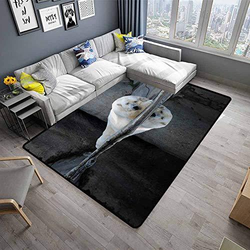 Bear,Anti-Slip Cooking Kitchen Carpets 24