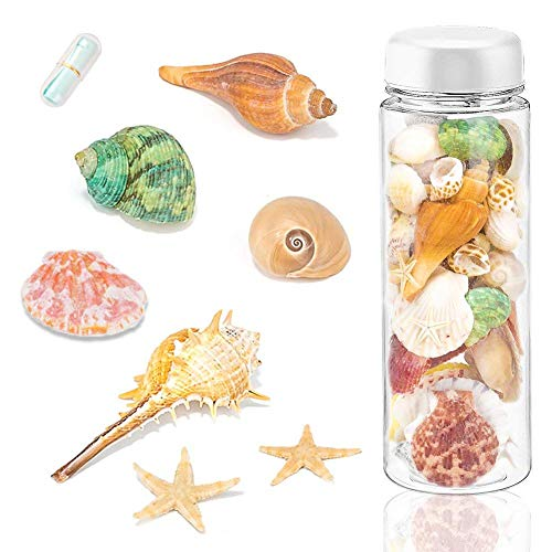 Mini Beach Natural Shells - Sea Shells Mixed Beach Seashells with Wish Bottle and Mini Paper Roll, 150 PCS Ocean Sea Shell Colorful Natural Conch Starfish for Candle Making Home Decoration Party Wedding Vase Filler