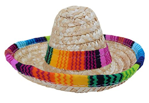 Baja Ponchos Dog Sombrero Hat - Funny Dog Costume - Chihuahua Clothes - Mexican Party Decorations -
