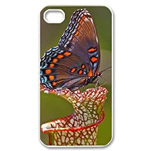 taoyix diy Butterfly Customized Cover Case for Iphone 5C,custom phone case ygtg523360
