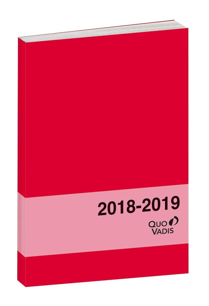 Quo Vadis Welcome Textagenda Agenda scolaire Journalier Année 2018-2019 Gris 0291705Q