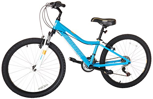 Diamondback Bicycles Lustre 24 Kid's Mountain Bike, 24' Wheels, Blue