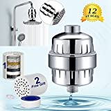 12-Stage Shower Filter, YECO Shower Head Filter- Chlorine Filter - Hard Water Filter - Water Softener - Handheld Shower Filter - Removes Chlorine & Heavy Metals-Prevents Dry Skin & Hair Loss( 2 Cartridges)–Best Gift for Family