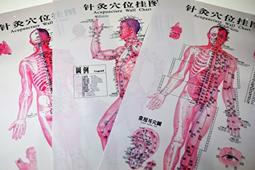 AcuSource Acupuncture Charts. Seven Visually Captivating Charts of Standard Human Acupuncture Points. (Vinyl Unframed)
