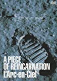 A PIECE OF REINCARNATION [DVD]