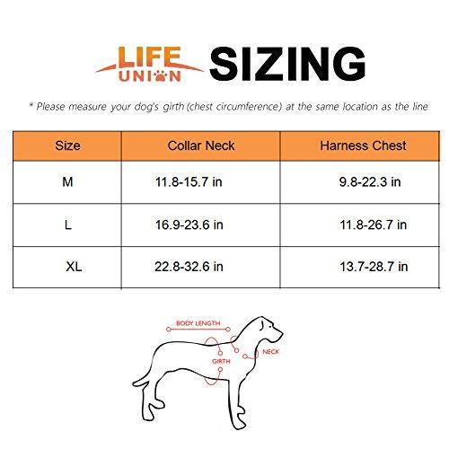 Lifeunion No Choke Dog Comfortable Harness and Heavy Duty Dog Training Walking Collar Vest Harness (XL, Black)