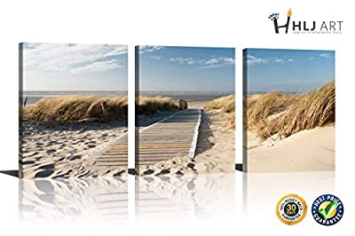 HLJ ART 3 Panels Beach Theme Seaside Starfish and Conch Seascape Giclee Canvas Prints on Modern Stretched and Framed Canvas Wall Art Sea Beach Pictures Artwork for Home Decor