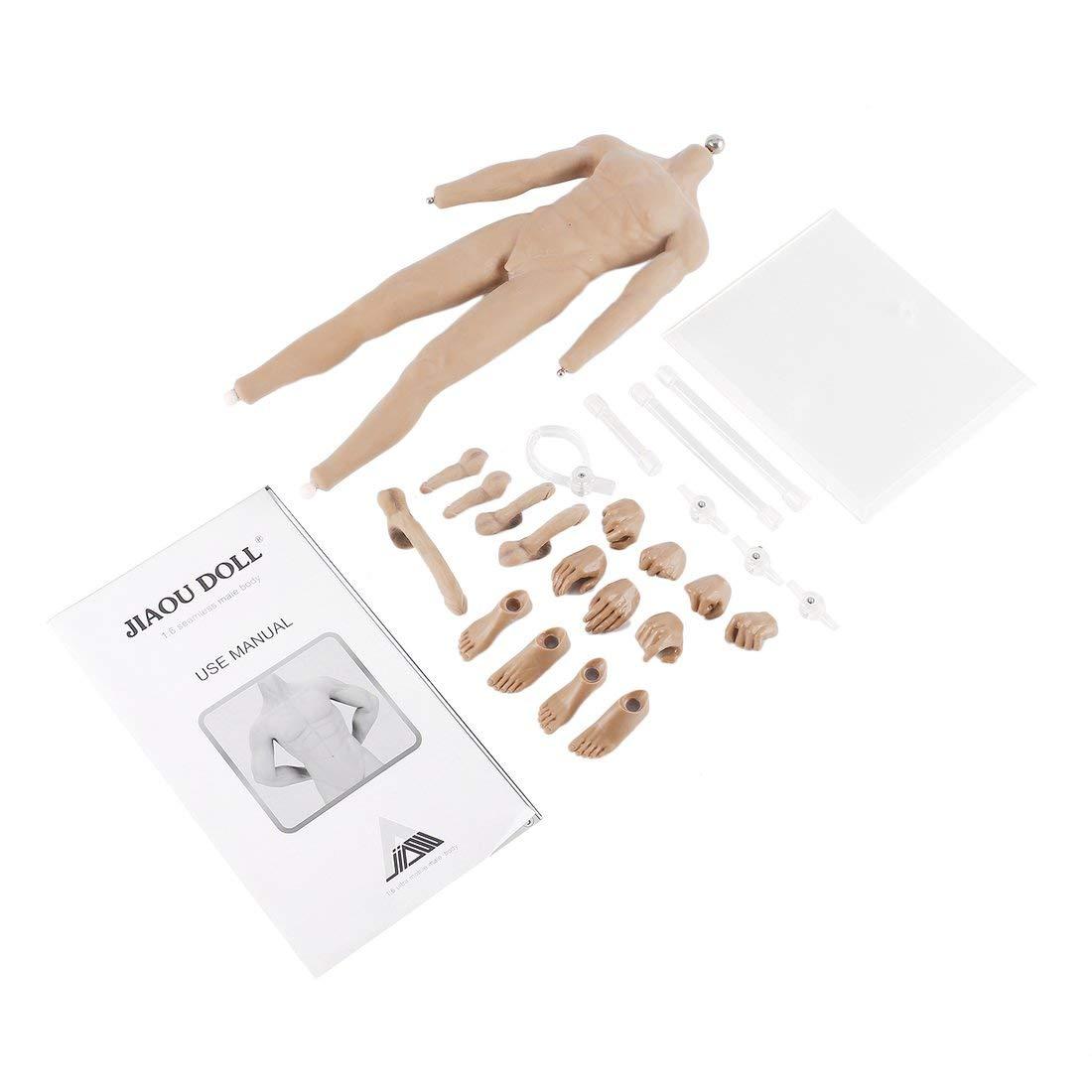 JIAOU Doll JOK-11C-PS / YS 1/6 Escala sin Costuras articulaciones de Bola de Cuerpo Masculino ultrasuaves 28 Puntos de Esqueleto de articulación