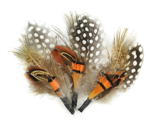 Touch of Nature 38108 3-Piece Natural Feather Pick with Nylon Loop for Arts and Crafts, 3.5-Inch, Guinea/Orange