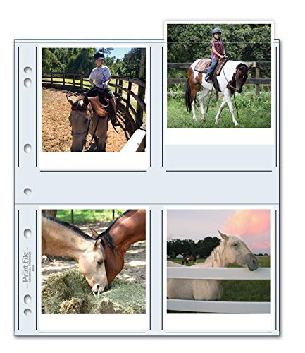 Print File 44-8P Photo Pages (100 Pack)