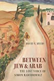 Between Jew and Arab: The Lost Voice of Simon Rawidowicz (The Tauber Institute Series for the Study of European Jewry)