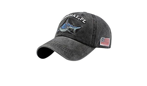 Amazon.com: WOCACHI Vanlentine Day Hats and Caps American Flag Denim Cap Baseball Cap Topee: Clothing