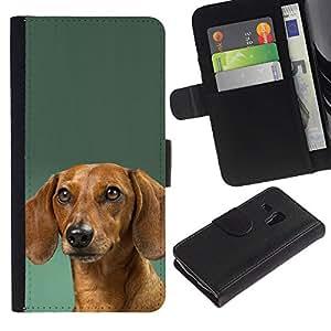 Dachshund Green Doxie Dog Puppy - la tarjeta de Crédito Slots PU Funda de cuero Monedero caso cubierta de piel Samsung Galaxy S3 MINI 8190