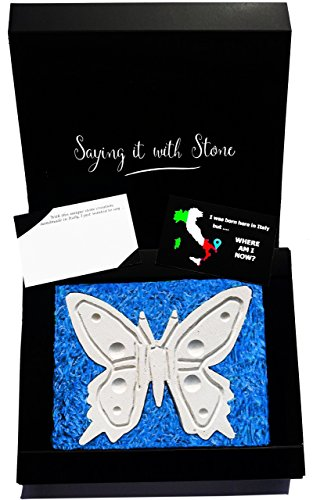 Butterfly - Valentine's Day Gift - Symbol of Change, Hope & Life - Elegant gift box & blank message card - Rare Italian stone contains fossil fragments - birthday retirement house decoration ornament