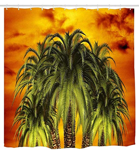 Palm Desert Shower Curtain - AshasdS Palm Trees Art Shower Curtain Design Polyester Waterproof Fabric with 12 Rust Proof Hooks,66 X 72 Inches