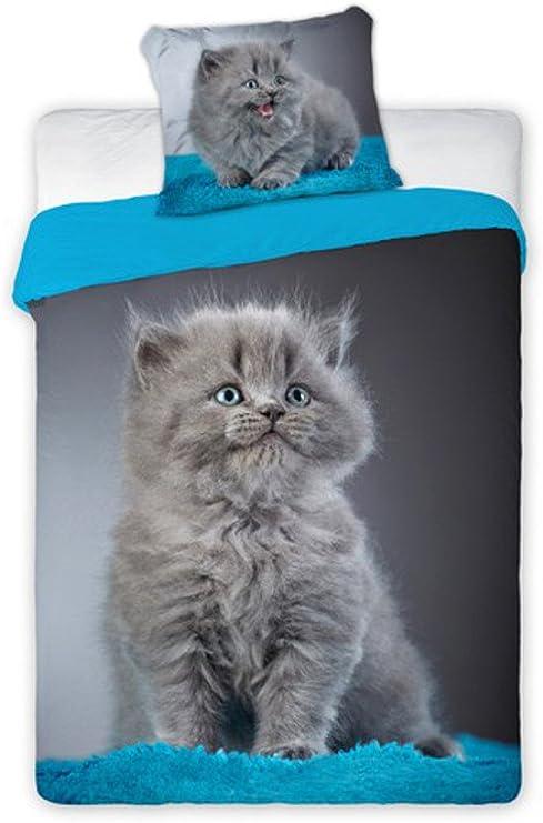 Unbekannt Juego de Cama con Gatos Faro Best Friends, 140 x 200 cm, BF010, algodón, múltiples Colores, 200 x 140 cm: Amazon.es: Hogar
