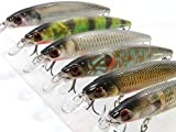 6 Hard Baits Fishing Lures Plus Free Tackle Box Slow Flaoting Tight Wobble Weight Transfer Jerkbait HM600KB