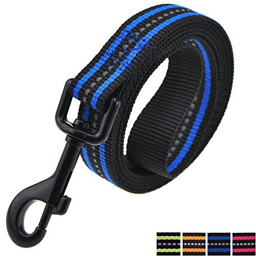 Mile High Life Night Reflective Double Band Nylon Small Animal Pet Dog (Blue Leash, Large Neck 16-21 -55 lb)