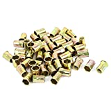 M8 Carbon Steel Reduced Head Inner Hex Blind Insert Rivets Nuts 50pcs