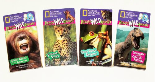 Really Wild Animals Collection (4pk): Swinging Safari, Monkey Business, Totally Tropical Rainforest, Dinosaurs and Other Creature -