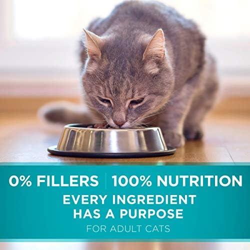 Purina ONE Hairball Formula Adult Dry Cat Food 10